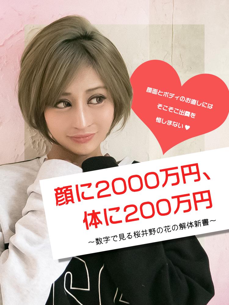 顔に2000万円、体に200万円 〜数字で見る桜井野の花の解体新書〜